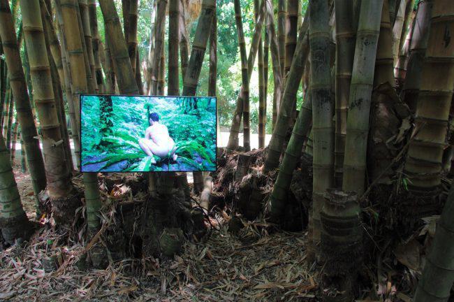 Manifesta 12, sesso con le piante. Polemica su installazione-video di Zheng Bo