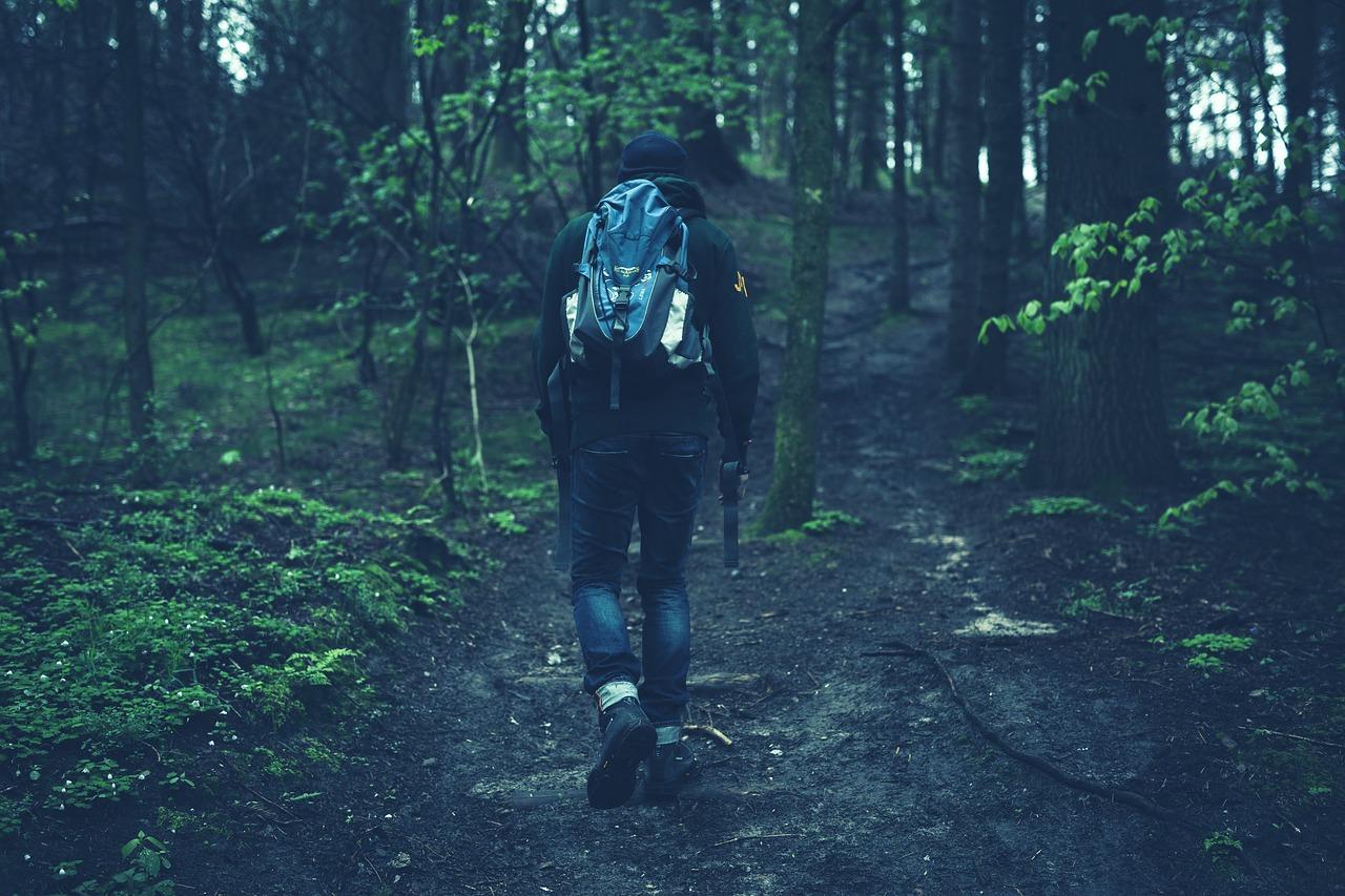 uomo trova tesoro nel bosco