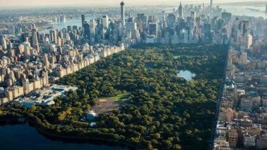 New York Concerto