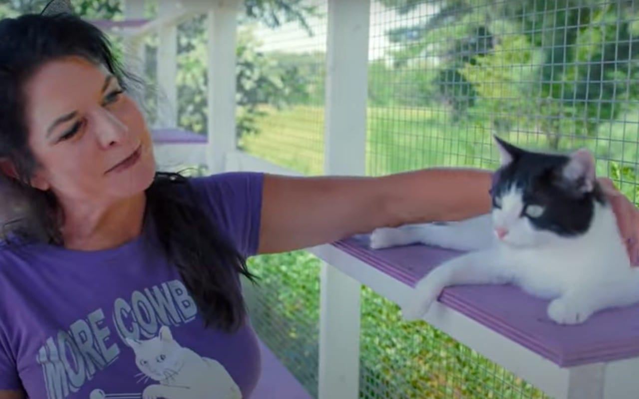 cat people netflix
